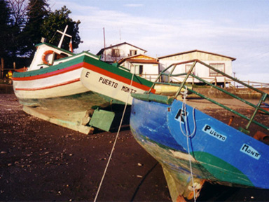 Colorful boats at low tide