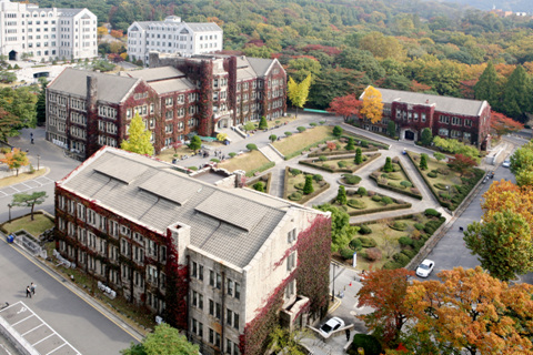 Yonsei-Bird's Eye View